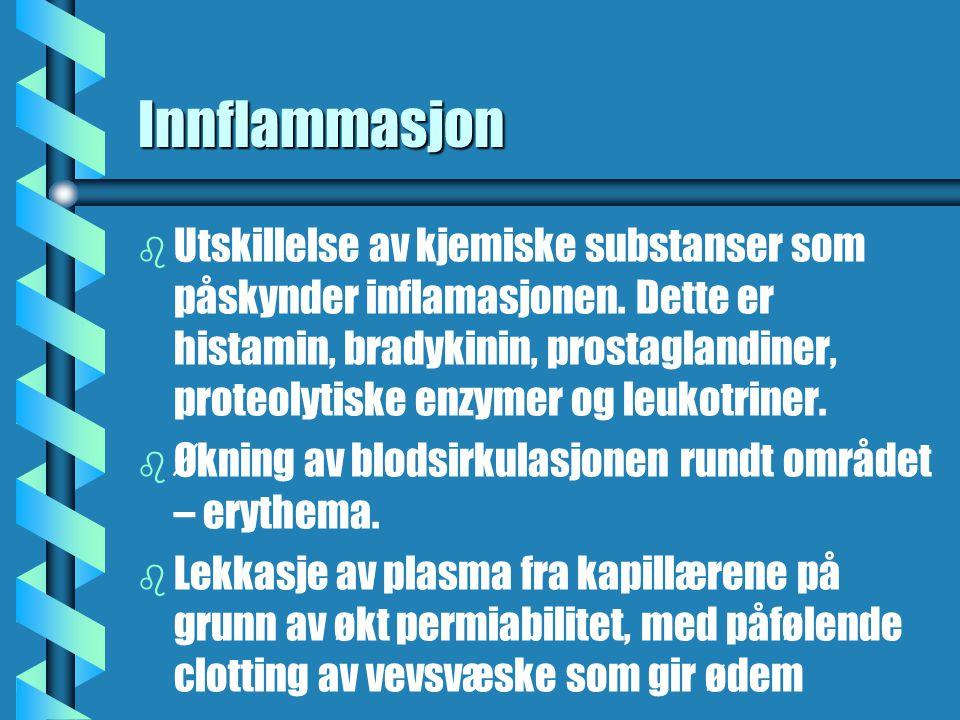 Innflammasjon b b Utskillelse av kjemiske substanser som påskynder inflamasjonen. Dette er histamin, bradykinin, prostaglandiner, proteolytiske enzyme