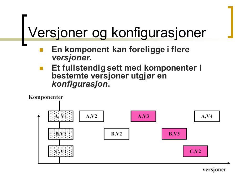16 Versjoner og konfigurasjoner En komponent kan foreligge i flere versjoner. Et fullstendig sett med komponenter i bestemte versjoner utgjør en konfi