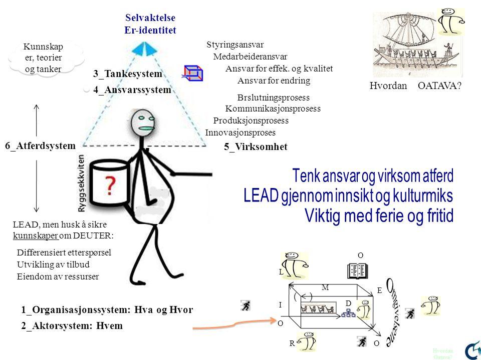 Selvaktelse Er-identitet 3_Tankesystem 5_Virksomhet 6_Atferdsystem 1_Organisasjonssystem: Hva og Hvor 2_Aktørsystem: Hvem Styringsansvar Medarbeideran