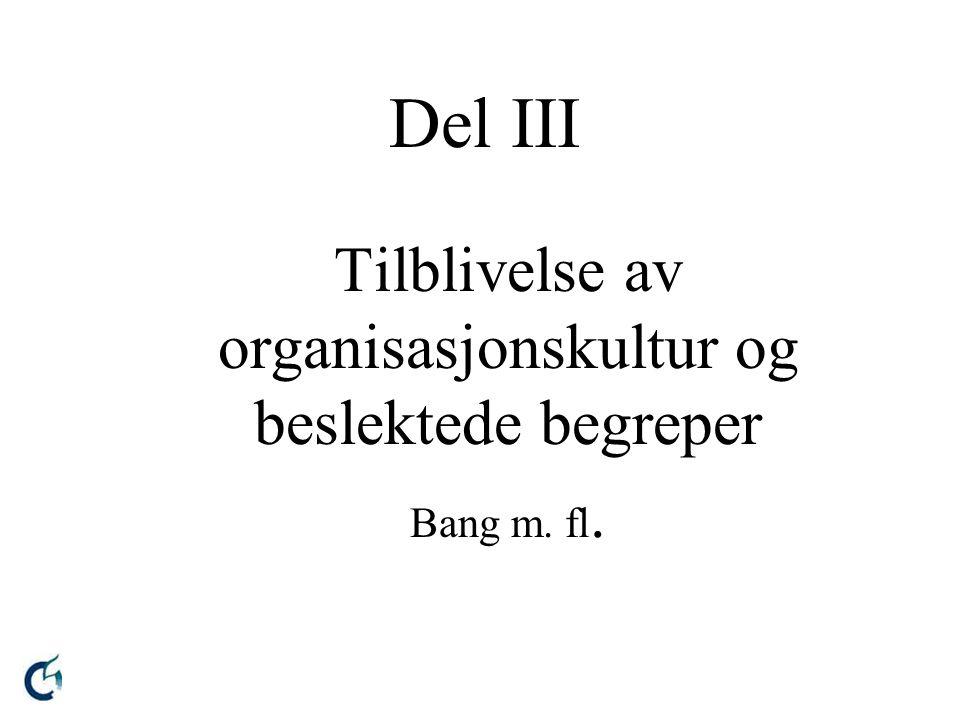 Del III Tilblivelse av organisasjonskultur og beslektede begreper Bang m. fl.