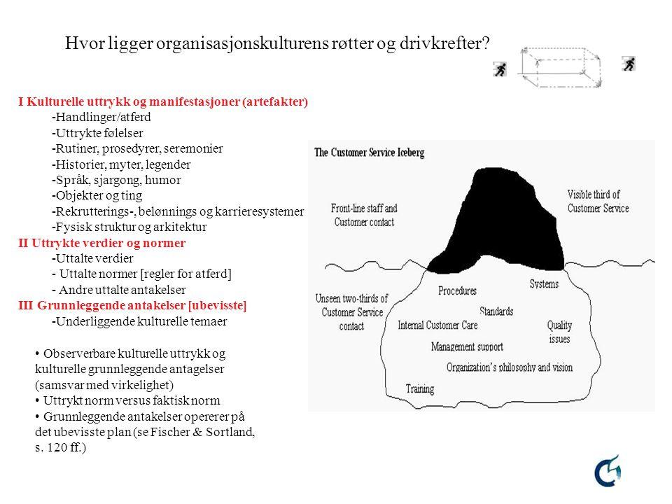 8 Hvor ligger organisasjonskulturens røtter og drivkrefter? I Kulturelle uttrykk og manifestasjoner (artefakter) -Handlinger/atferd -Uttrykte følelser