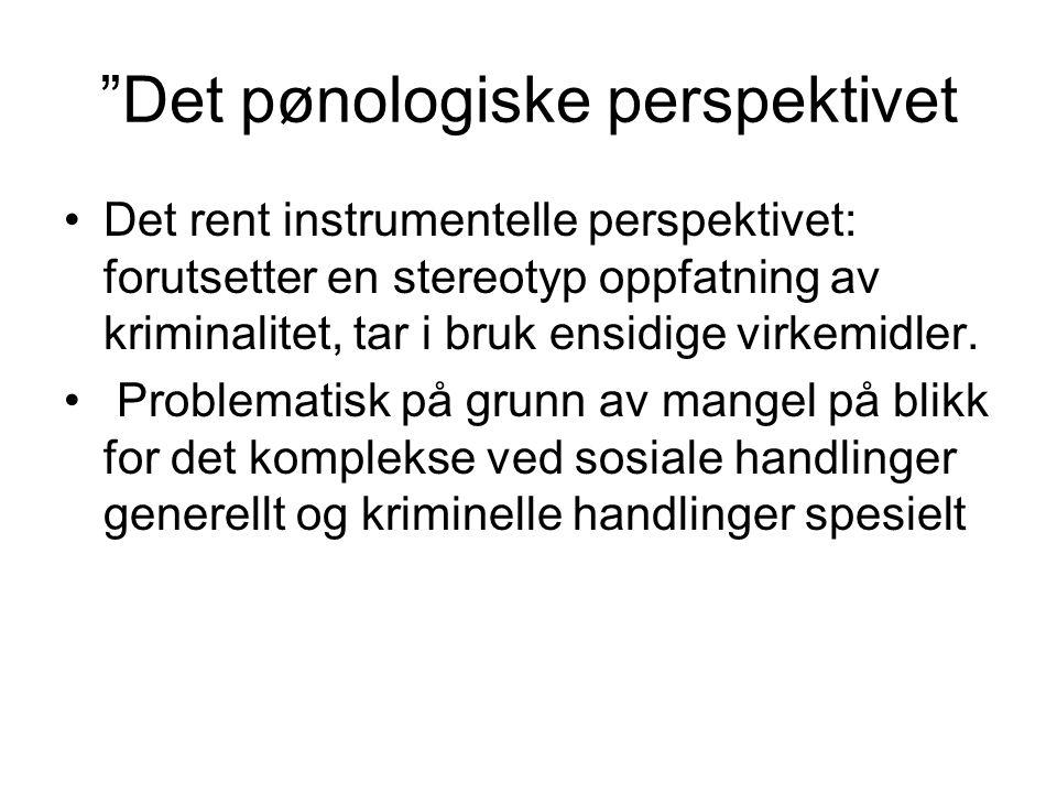 Det pønologiske perspektivet Det rent instrumentelle perspektivet: forutsetter en stereotyp oppfatning av kriminalitet, tar i bruk ensidige virkemidler.