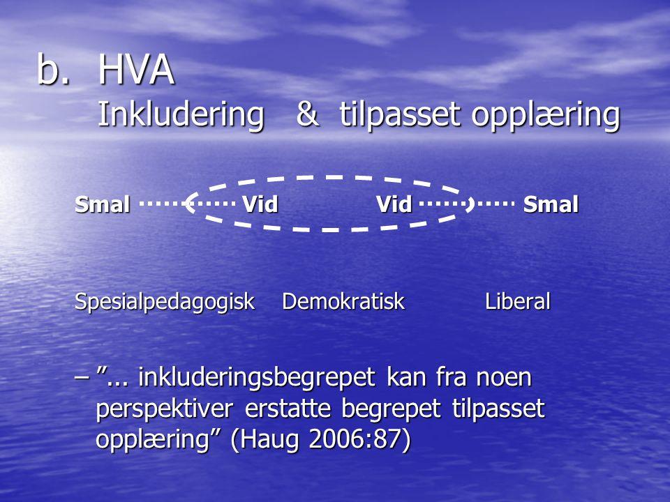 b.HVA Inkludering & tilpasset opplæring SmalVidVid Smal Spesialpedagogisk Demokratisk Liberal – ...