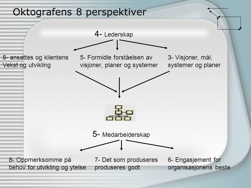 Organisasjonsprosessene i Oktografen: Beslutnings-, kommunikas-, produksjons- og innovasjonsprosessene.