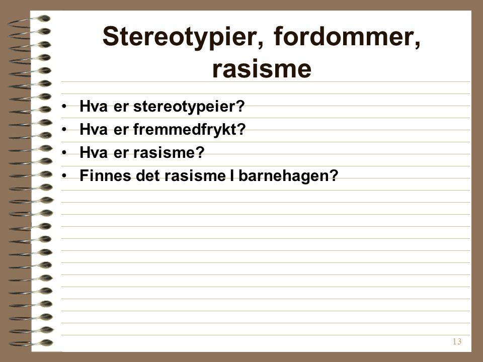 13 Stereotypier, fordommer, rasisme Hva er stereotypeier.