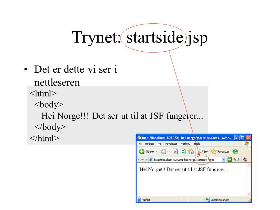Trynet: startside.jsp Det er dette vi ser i nettleseren Hei Norge!!.