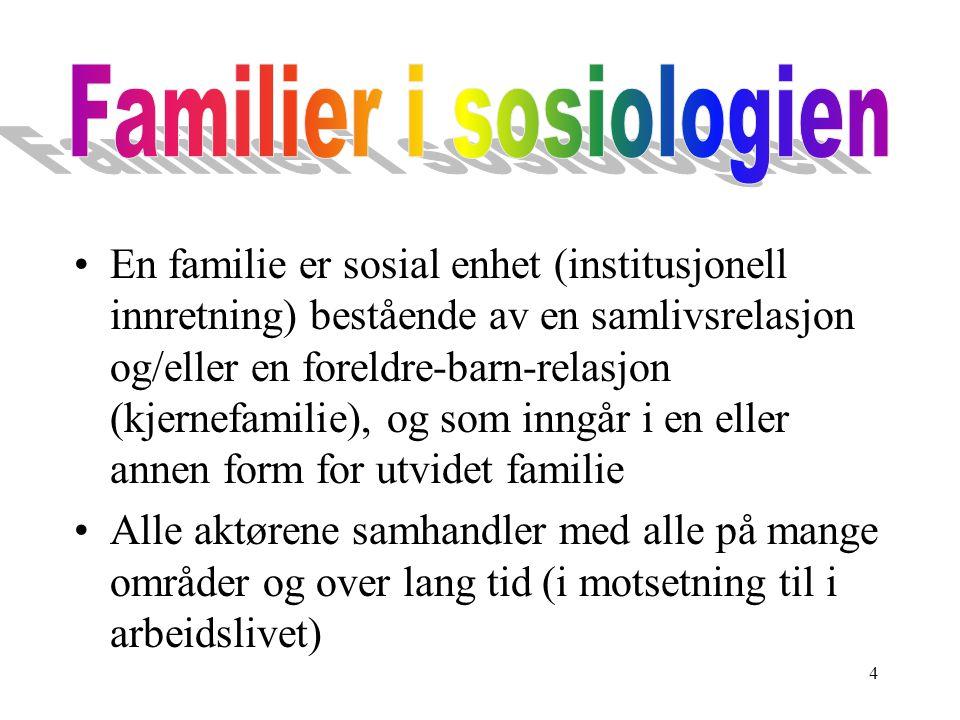 4 En familie er sosial enhet (institusjonell innretning) bestående av en samlivsrelasjon og/eller en foreldre-barn-relasjon (kjernefamilie), og som in