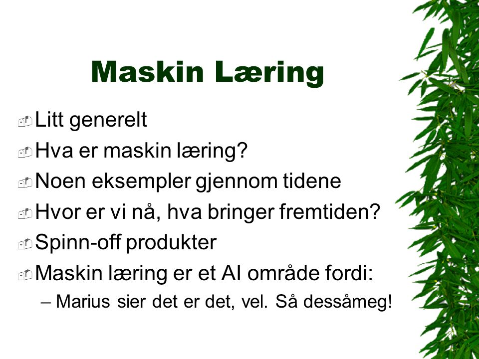 Maskin Læring  Find a bug in a program, and fix it, and the program will work today.