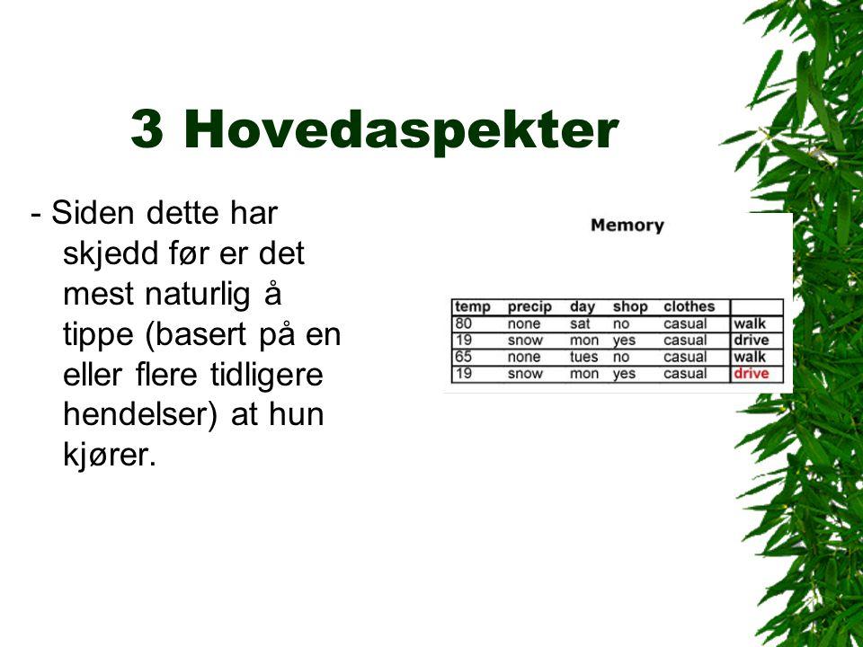 3 Hovedaspekter - Siden dette har skjedd før er det mest naturlig å tippe (basert på en eller flere tidligere hendelser) at hun kjører.