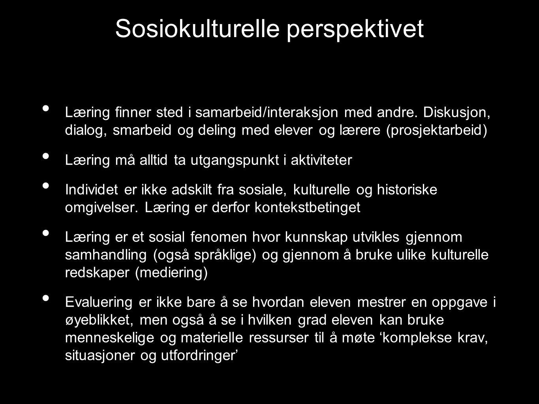 Sosiokulturelle perspektivet Læring finner sted i samarbeid/interaksjon med andre.