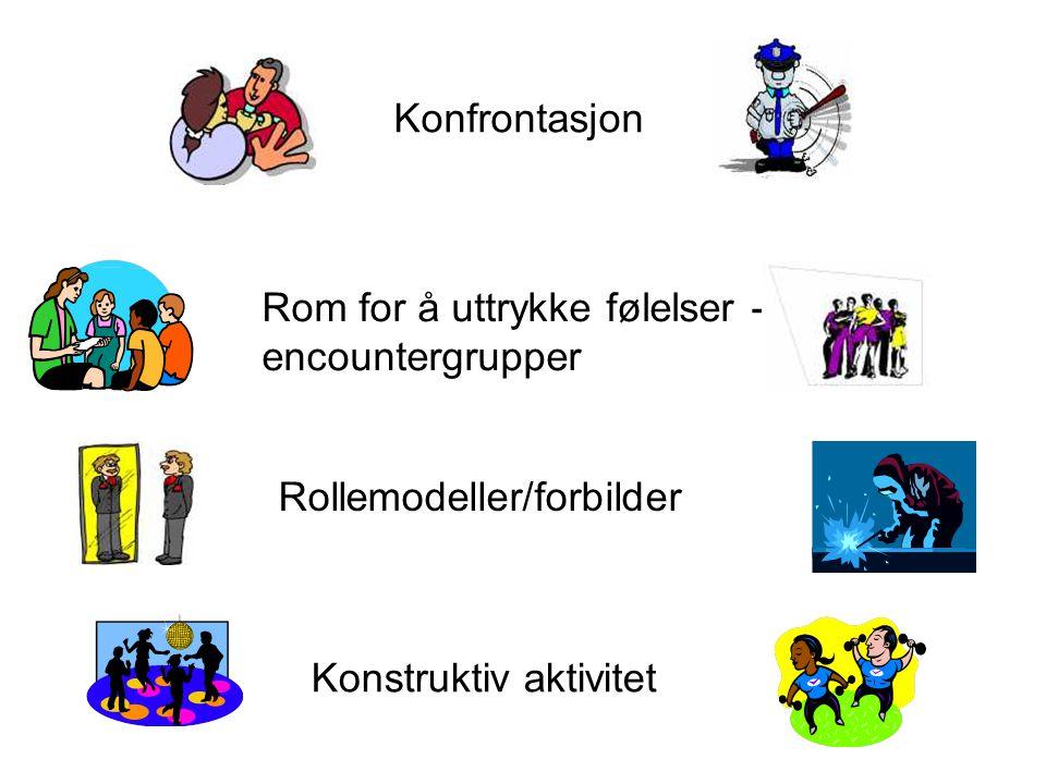 Konfrontasjon Rom for å uttrykke følelser - encountergrupper Rollemodeller/forbilder Konstruktiv aktivitet
