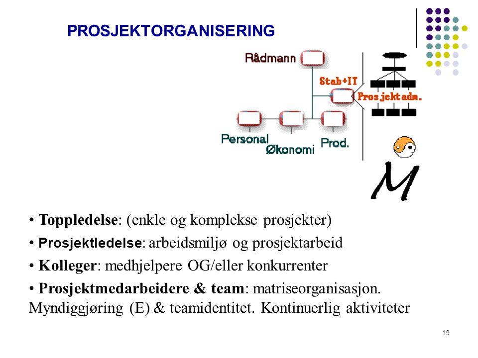 18 PROBLEMLØSNINGSMETODER DIPE (Argyris) UCR (Lewin) DETI (Ibn Khaldun 1332-1406) MØVK og SOAF (Araki) NGT_teknikk (delbecq) NGT_teknikk SWOT-matrise