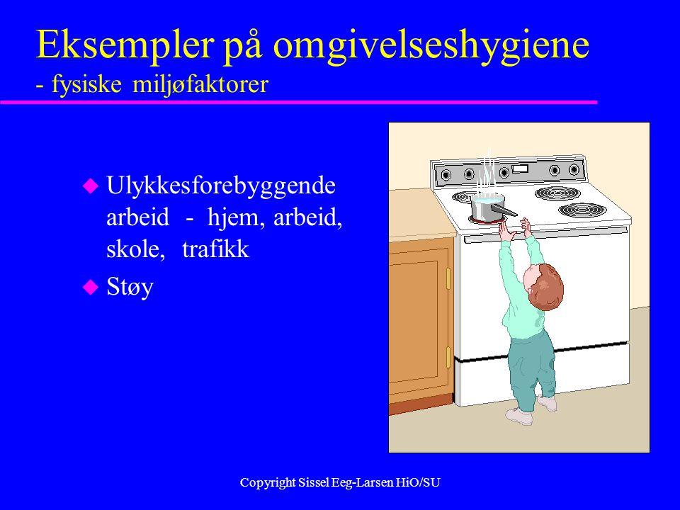 Copyright Sissel Eeg-Larsen HiO/SU Eksempler på omgivelseshygiene - fysiske miljøfaktorer u Ulykkesforebyggende arbeid - hjem, arbeid, skole, trafikk u Støy
