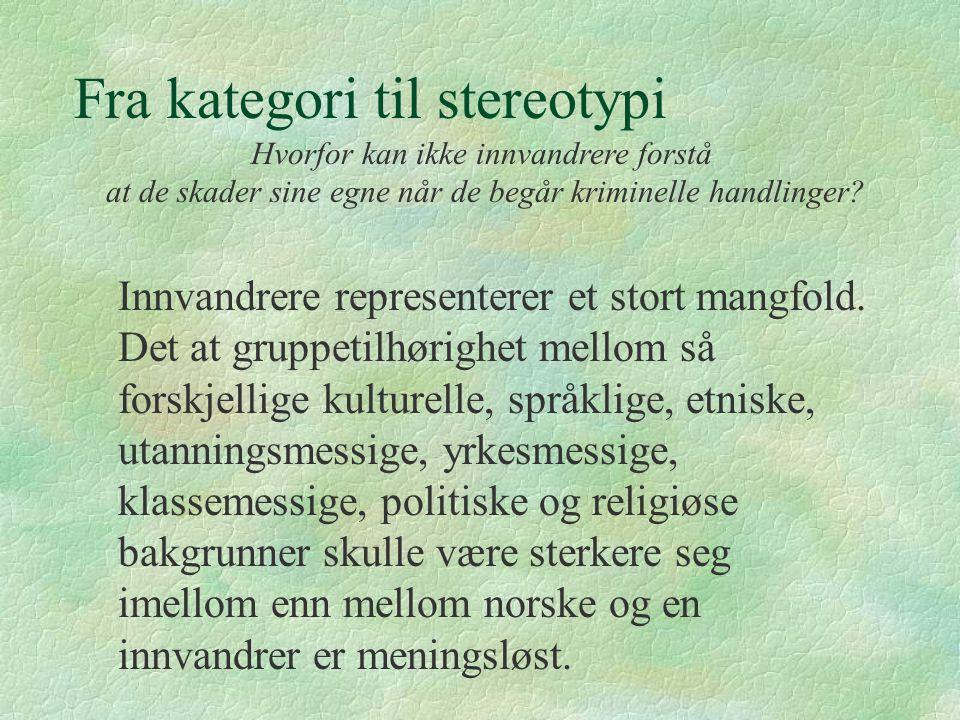 Fra kategori til stereotypi Innvandrere representerer et stort mangfold. Det at gruppetilhørighet mellom så forskjellige kulturelle, språklige, etnisk