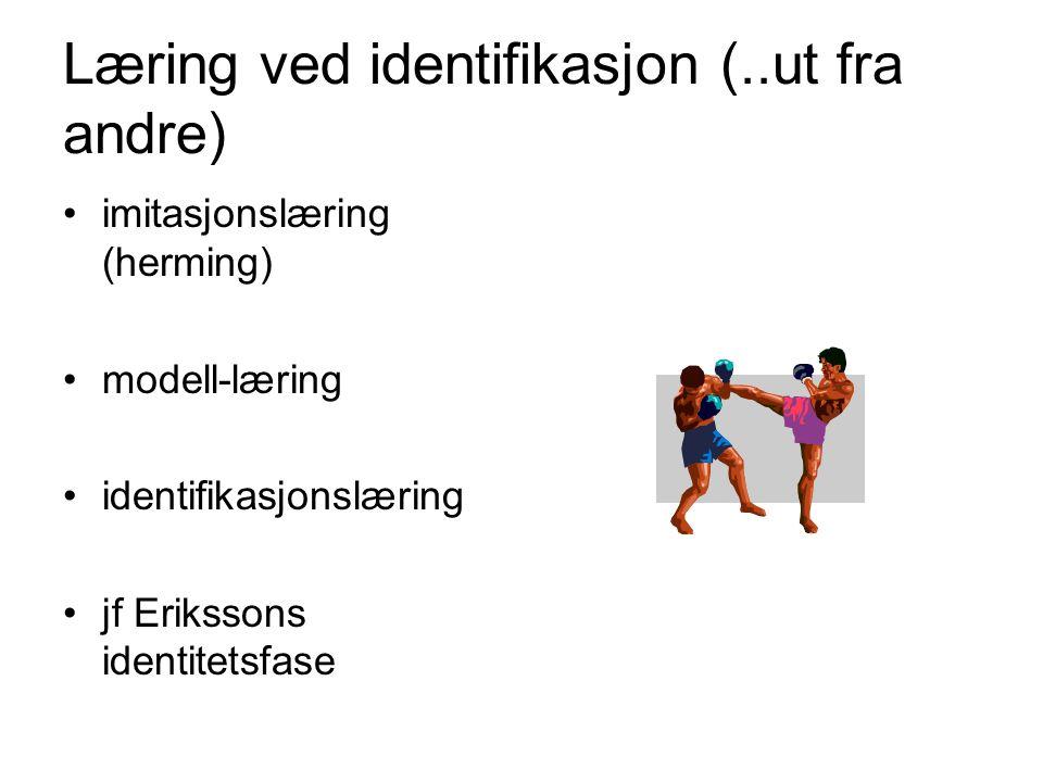 Læring ved identifikasjon (..ut fra andre) imitasjonslæring (herming) modell-læring identifikasjonslæring jf Erikssons identitetsfase