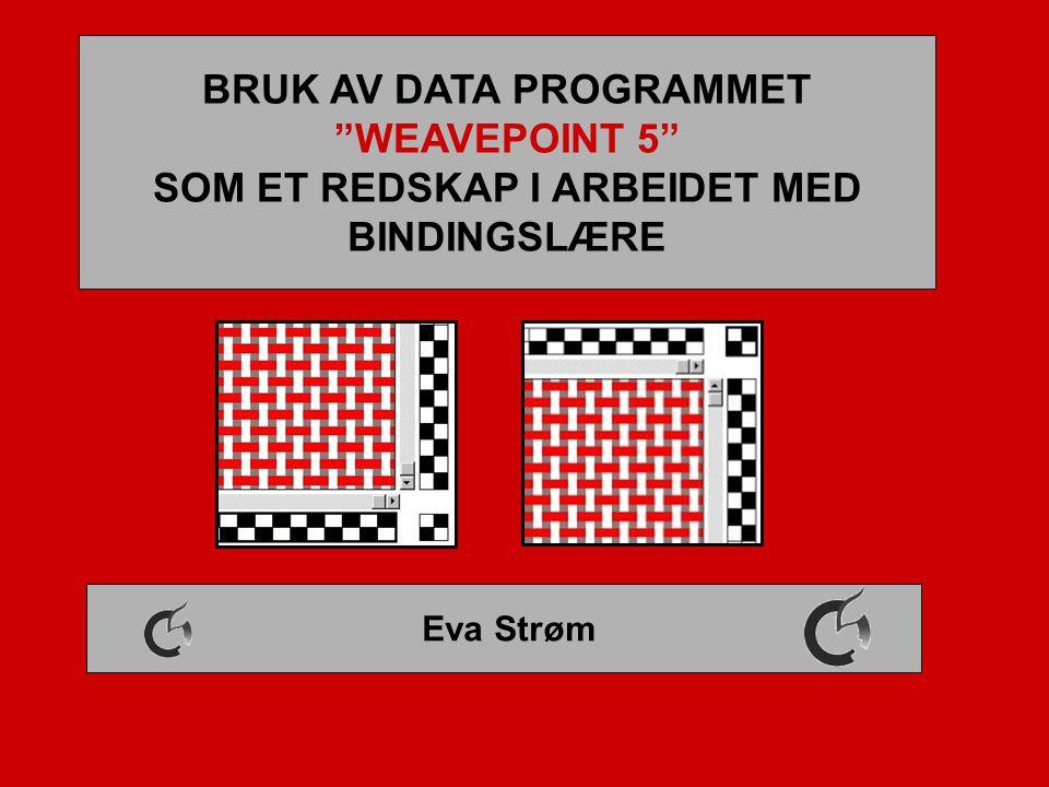"""BRUK AV DATA PROGRAMMET """"WEAVEPOINT 5"""" SOM ET REDSKAP I ARBEIDET MED BINDINGSLÆRE Eva Strøm"""