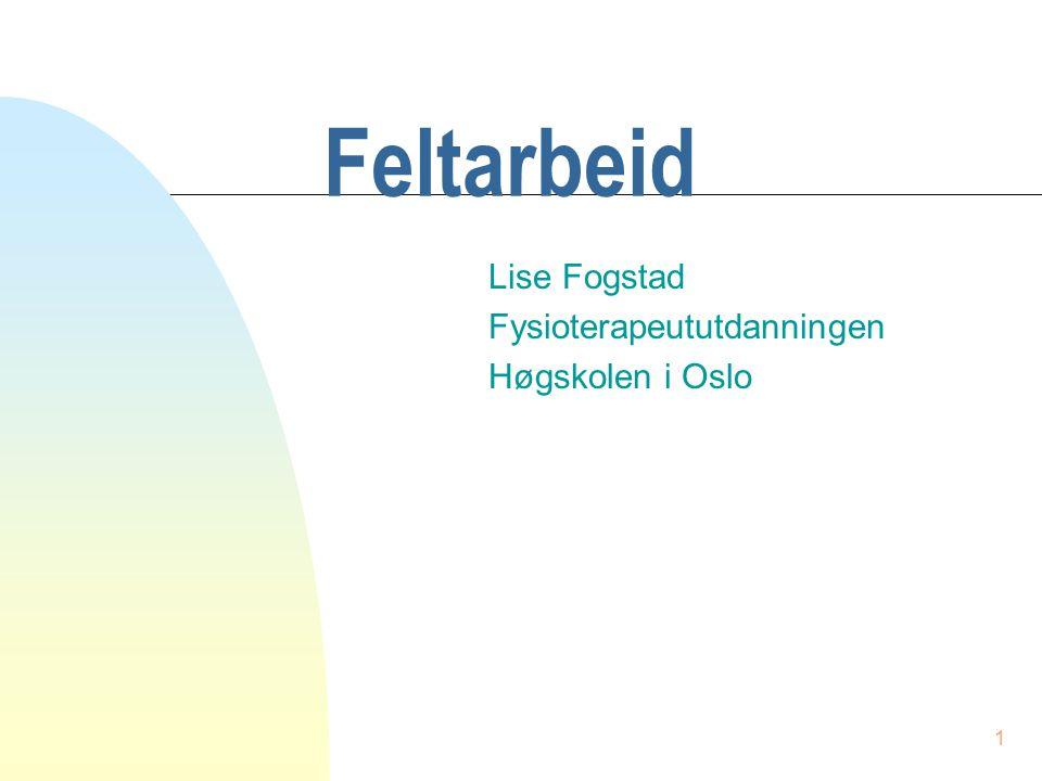 1 Feltarbeid Lise Fogstad Fysioterapeututdanningen Høgskolen i Oslo