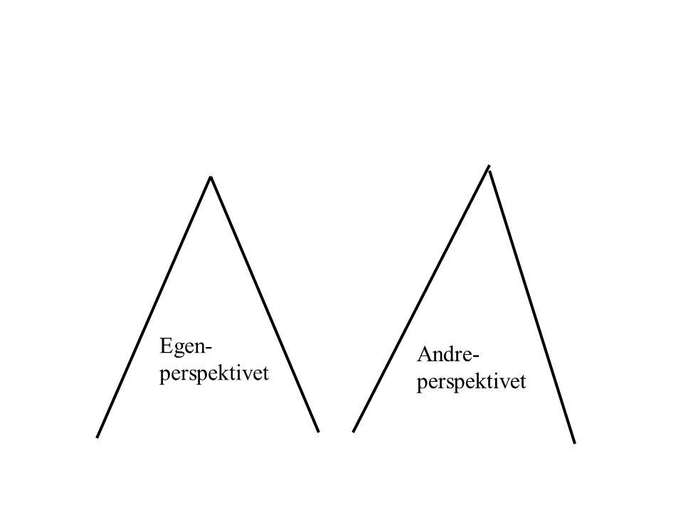 egen- perspektivet andre- perspektivet det intersubjektive opplevelses- fellesskapet Samhandlings -perspektivet