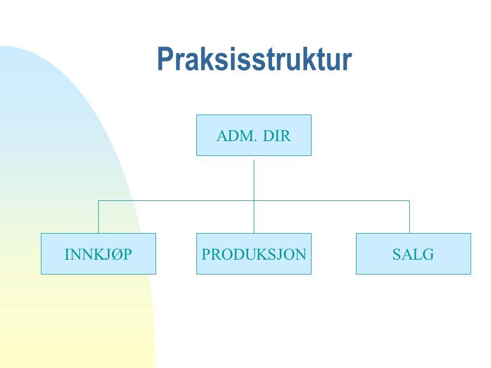 Praksisstruktur ADM. DIR SALGPRODUKSJONINNKJØP
