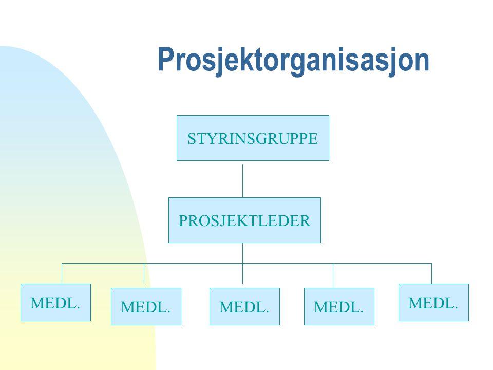 Prosjektorganisasjon STYRINSGRUPPE PROSJEKTLEDER MEDL.