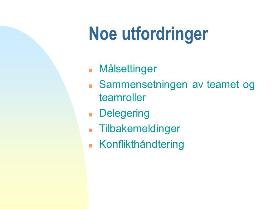 Noe utfordringer n Målsettinger n Sammensetningen av teamet og teamroller n Delegering n Tilbakemeldinger n Konflikthåndtering