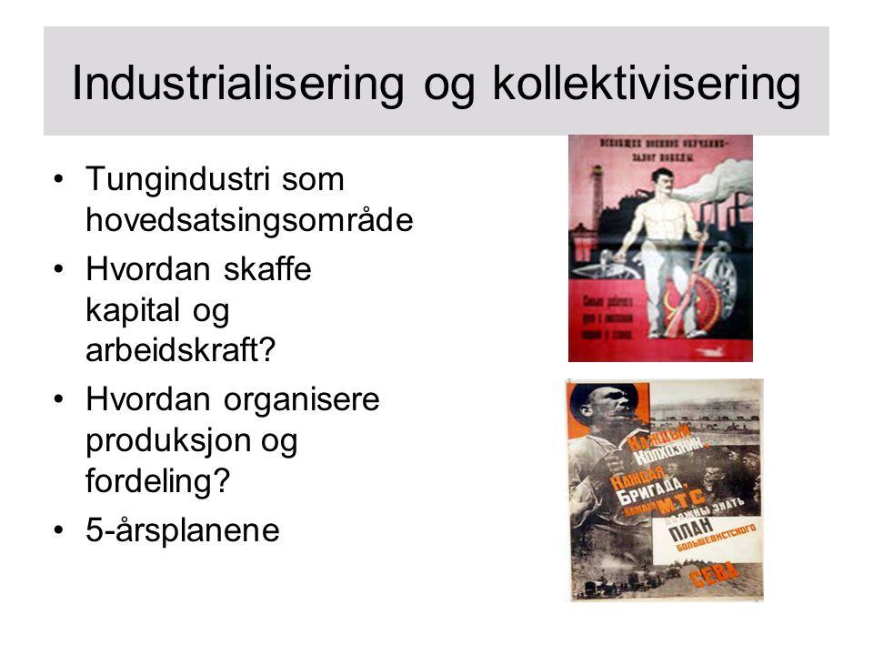 Industrialisering og kollektivisering Tungindustri som hovedsatsingsområde Hvordan skaffe kapital og arbeidskraft? Hvordan organisere produksjon og fo