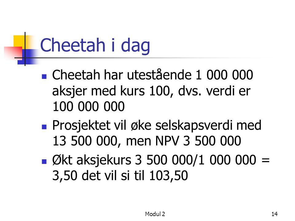 Modul 213 Finansiering og NPV Cheetah er 100 % egenkapital finansiert, med nytt prosjekt med NPV = 3 500 000 og investeringsutgift = 10 000 000 Hvorda