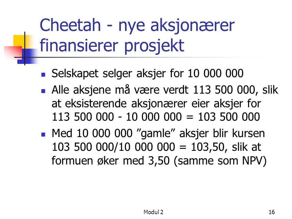 Modul 215 Cheetah - eksisterende aksjonærer finansierer prosjekt Dividende 10 000 000 betales ikke ut, hver aksjonær går glipp av 10 Markedet vil verd
