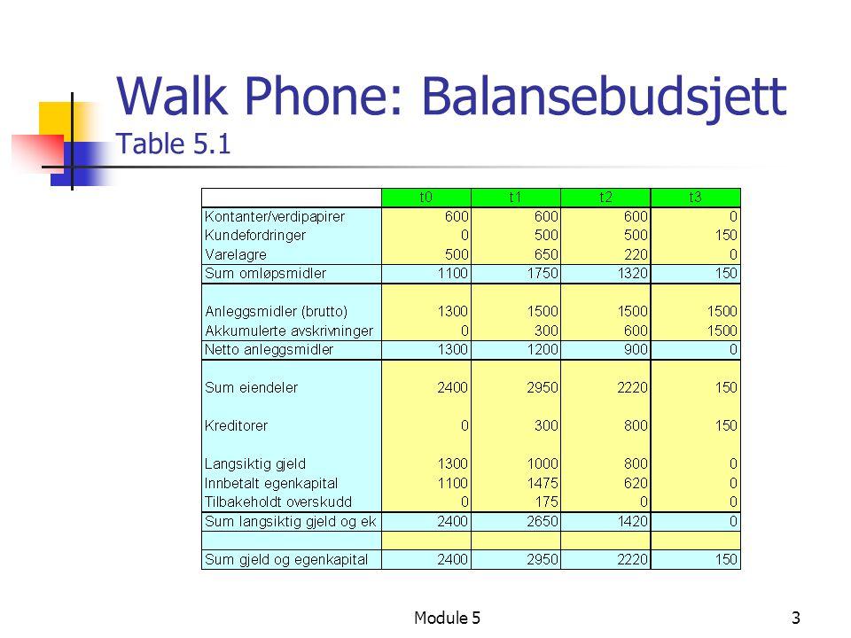 Module 53 Walk Phone: Balansebudsjett Table 5.1
