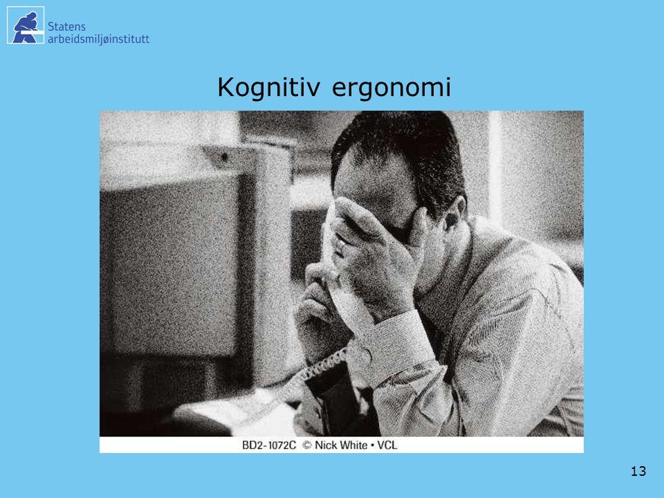 13 Kognitiv ergonomi