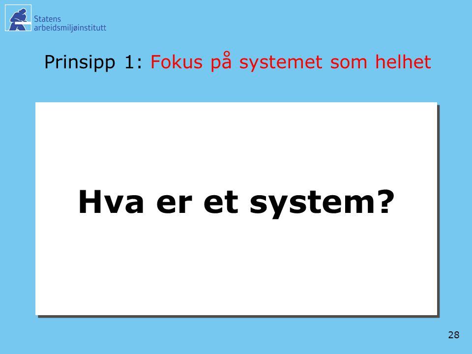 28 Prinsipp 1: Fokus på systemet som helhet Hva er et system?