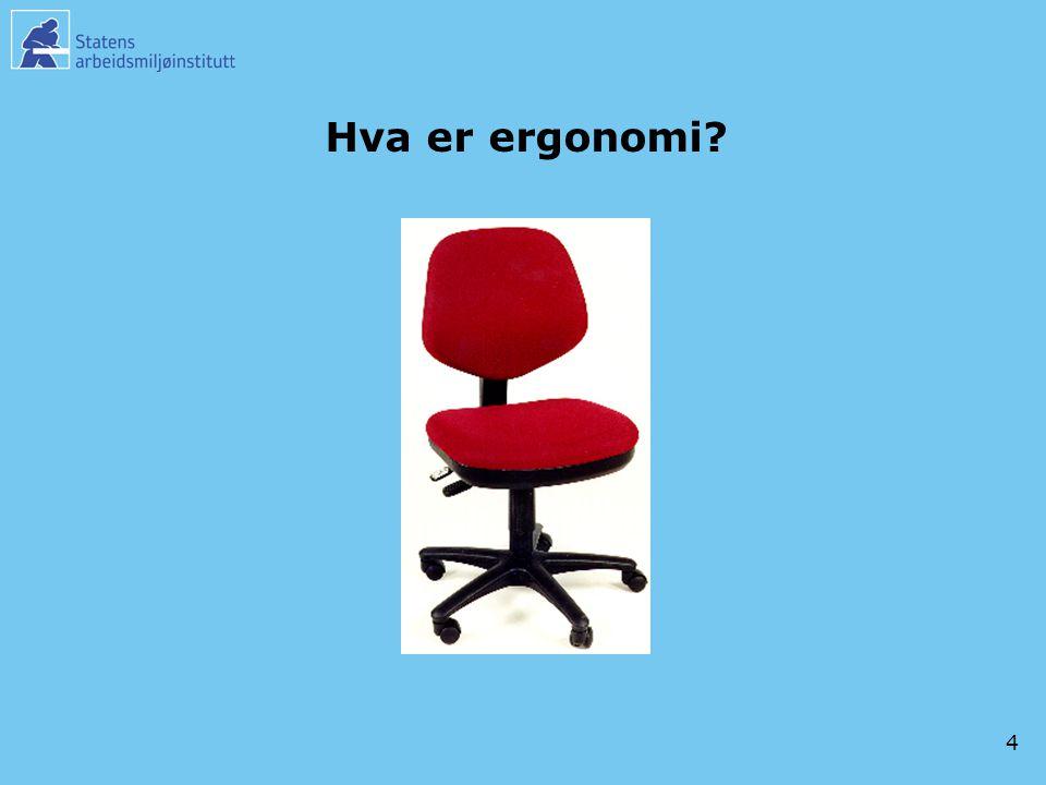4 Hva er ergonomi?