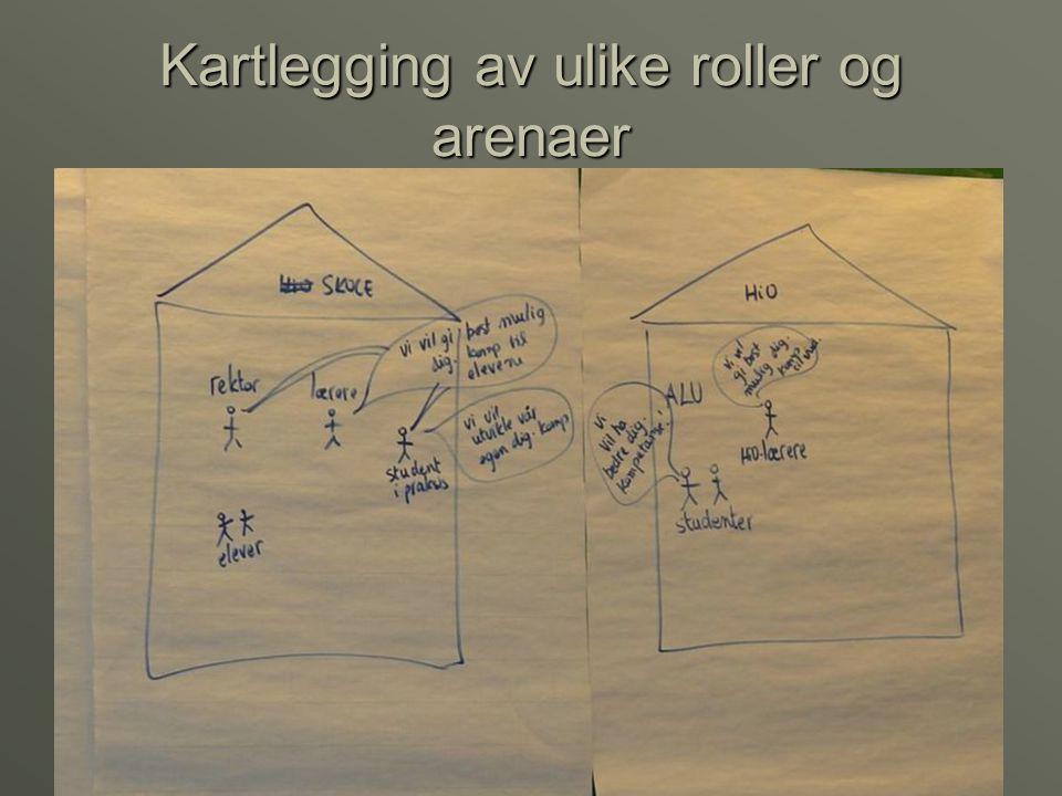 Kartlegging av ulike roller og arenaer