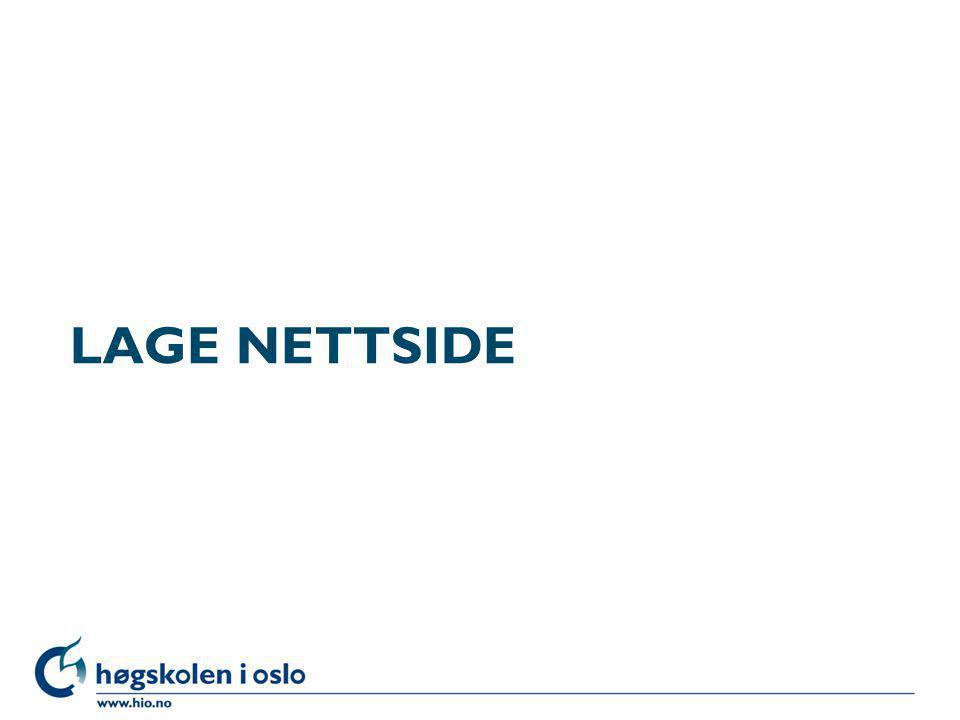 LAGE NETTSIDE