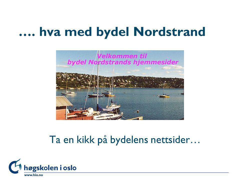 Høgskolen i Oslo …. hva med bydel Nordstrand Ta en kikk på bydelens nettsider…