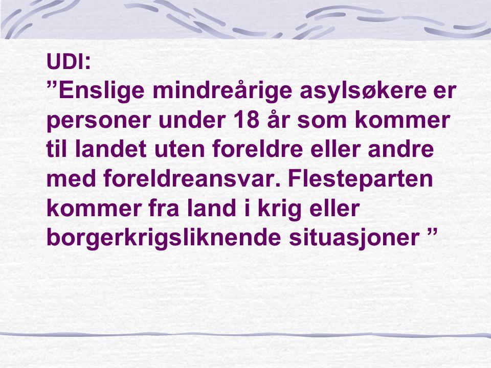 IV- Spesielle behov hos enslige mindreårige asylsøkere som følge av deres situasjon