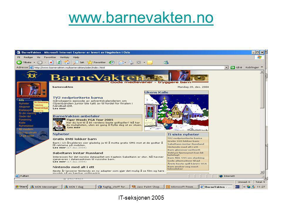 IT-seksjonen 2005 www.safesurf.com