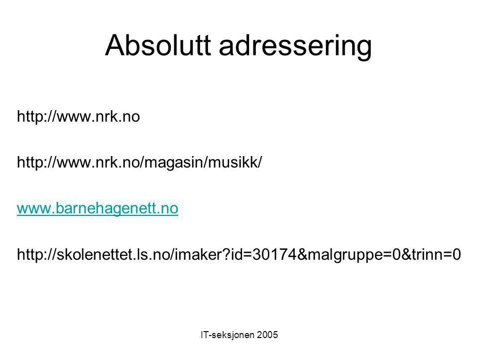 IT-seksjonen 2005 Absolutt adressering http://www.nrk.no http://www.nrk.no/magasin/musikk/ www.barnehagenett.no http://skolenettet.ls.no/imaker?id=30174&malgruppe=0&trinn=0