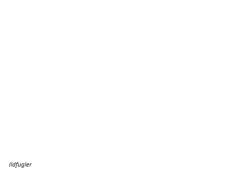 Adolescentulus Olsen: Rythmeskvulp (1895) – en diktsamling (utgitt under psevdonym) som latterliggjør nyromantisk lyrikk (parodier på dikt av Sigbjørn Obstfelder, Vilhelm Krag m.fl.) Adolescentulus Olsen = Hjalmar Christensen, Vilhelm Dons og Hugo Mowinckel Rytmeskvulp (1895) Halfdan Christensen (Digte, 1895) skal ha grått fornærmet da parodien kom ut, og han sluttet å skrive dikt Obstfelder kjøpte boka og moret seg over den