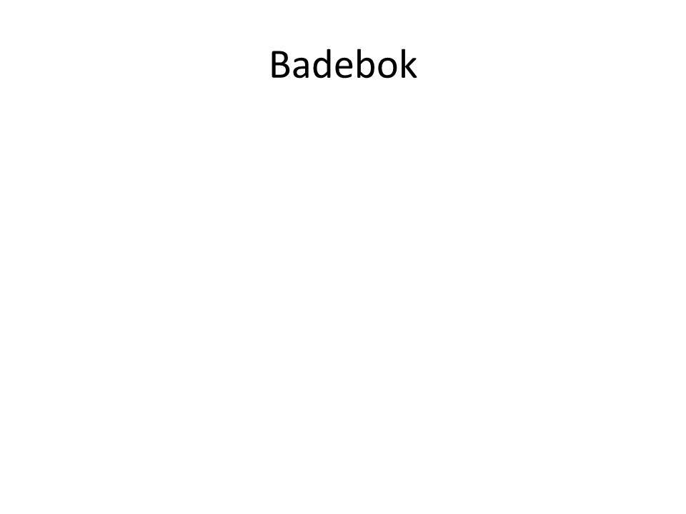 Badebok