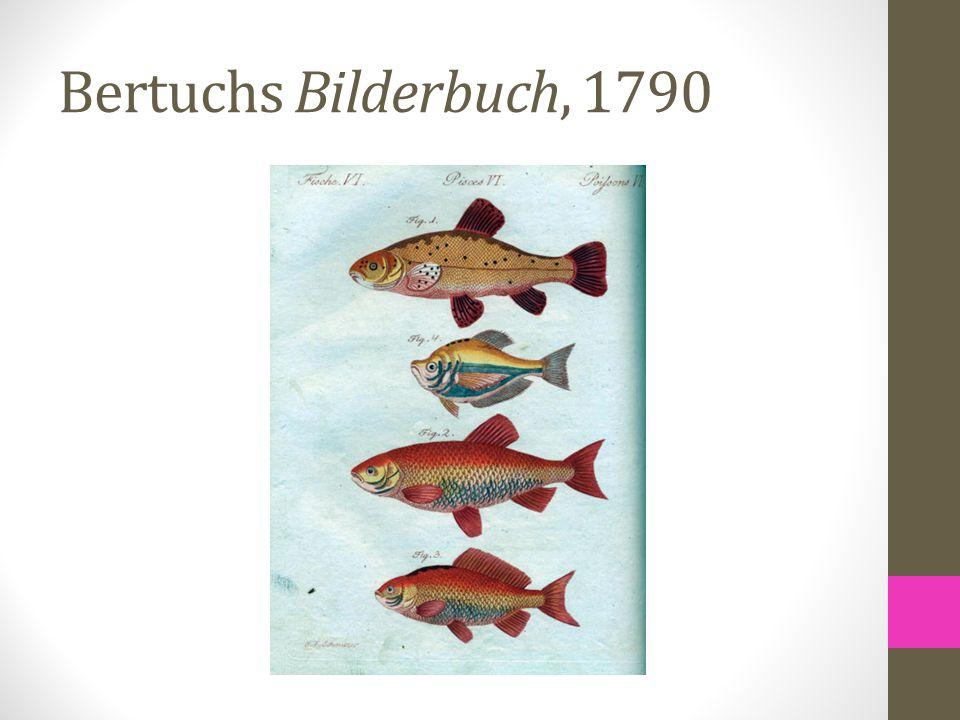 Bertuchs Bilderbuch, 1790