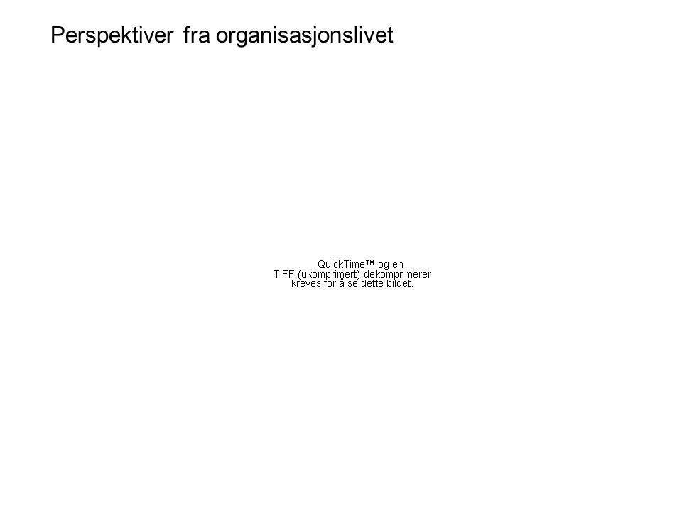 10: Spm-BV-3.Hvor vanlig er det å leve i en storfamilie i ikke- etnisk norske familier.