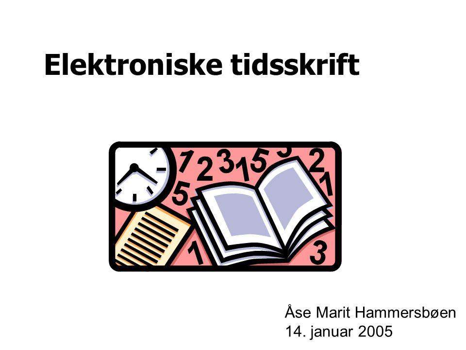 Elektroniske tidsskrift Åse Marit Hammersbøen 14. januar 2005