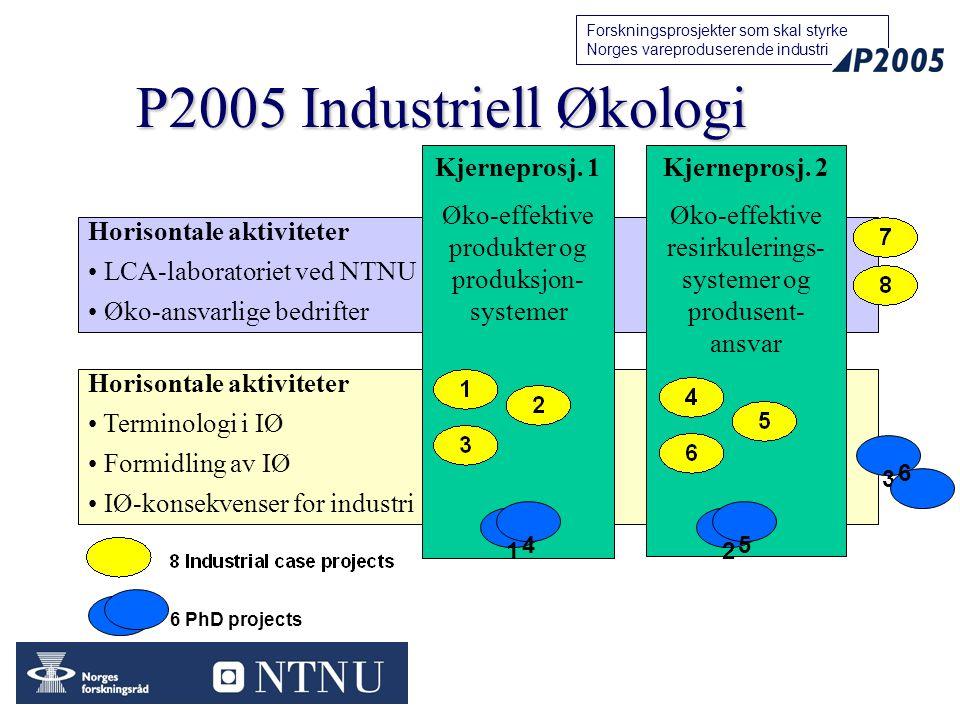 19 Forskningsprosjekter som skal styrke Norges vareproduserende industri P2005 Industriell Økologi Horisontale aktiviteter Terminologi i IØ Formidling av IØ IØ-konsekvenser for industri Horisontale aktiviteter LCA-laboratoriet ved NTNU Øko-ansvarlige bedrifter Kjerneprosj.