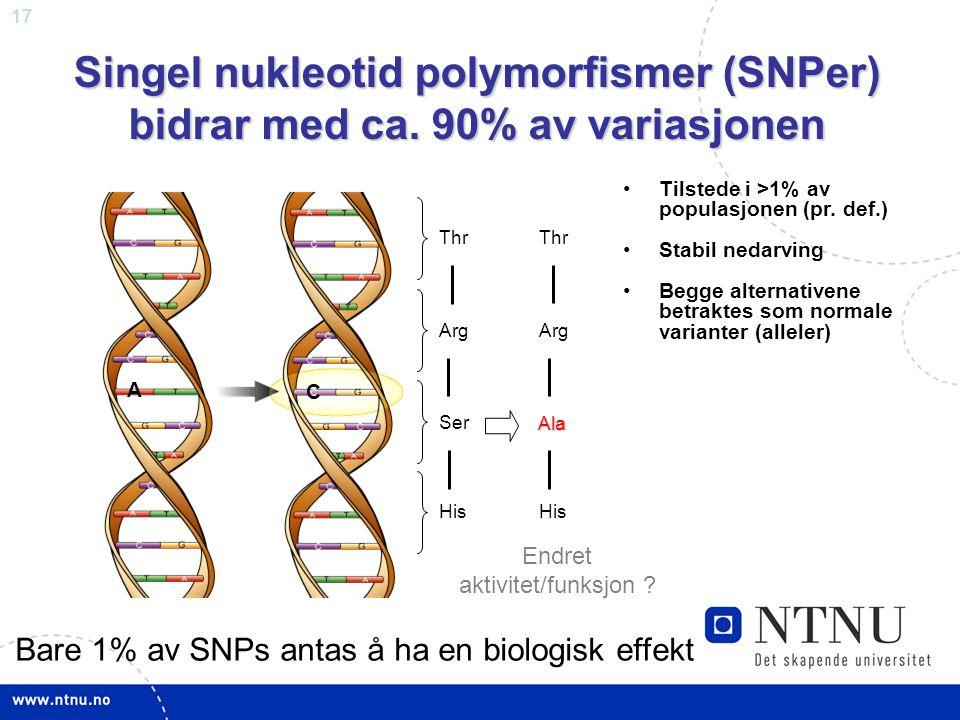 17 Singel nukleotid polymorfismer (SNPer) bidrar med ca. 90% av variasjonen Tilstede i >1% av populasjonen (pr. def.) Stabil nedarving Begge alternati