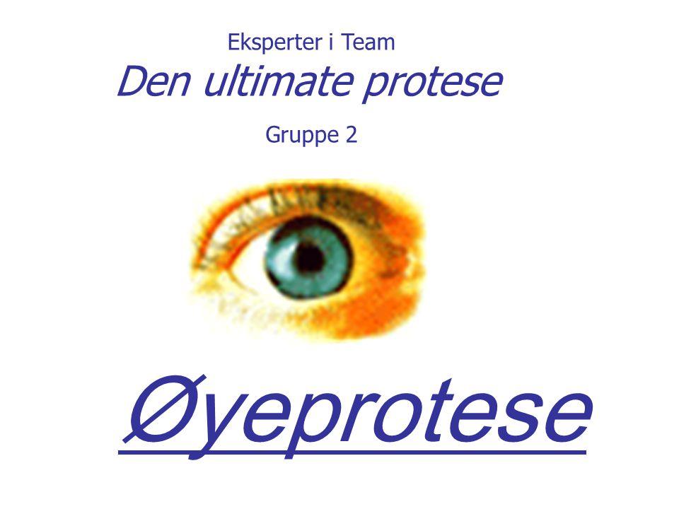 Eksperter i Team Den ultimate protese Gruppe 2 Øyeprotese