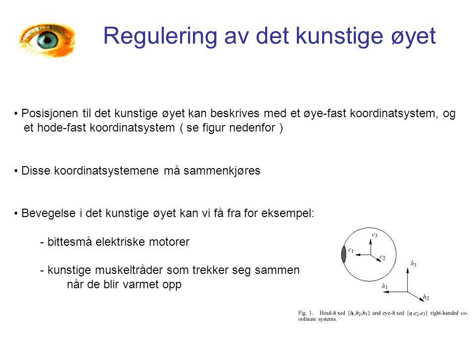 Regulering av det kunstige øyet Posisjonen til det kunstige øyet kan beskrives med et øye-fast koordinatsystem, og et hode-fast koordinatsystem ( se f