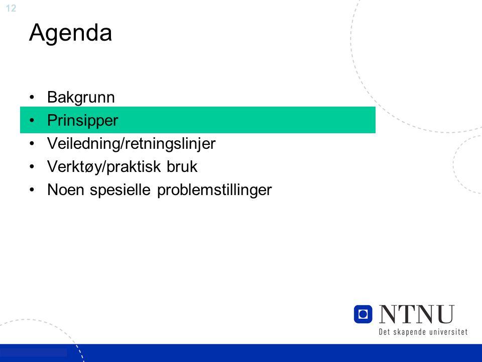 12 Agenda Bakgrunn Prinsipper Veiledning/retningslinjer Verktøy/praktisk bruk Noen spesielle problemstillinger