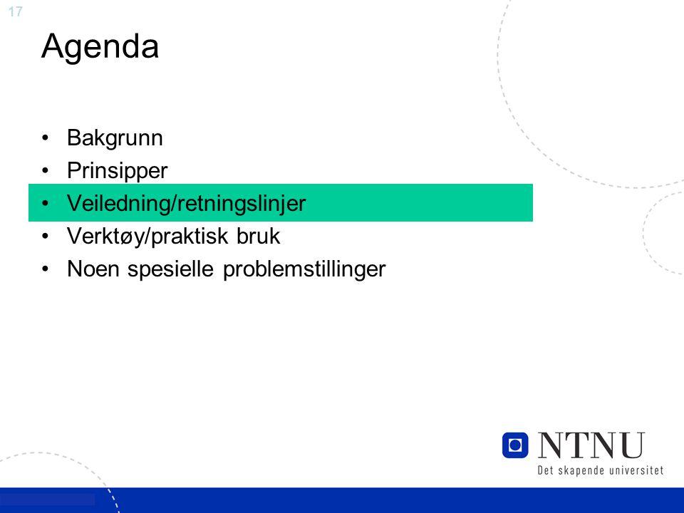 17 Agenda Bakgrunn Prinsipper Veiledning/retningslinjer Verktøy/praktisk bruk Noen spesielle problemstillinger