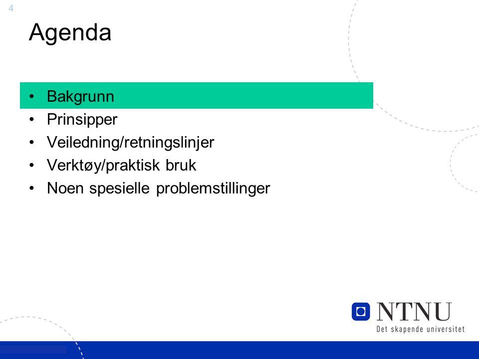 4 Agenda Bakgrunn Prinsipper Veiledning/retningslinjer Verktøy/praktisk bruk Noen spesielle problemstillinger